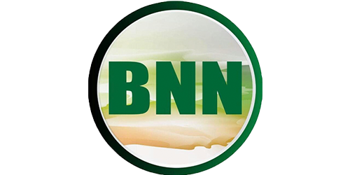 Image result for BNN GROUP LIMITED TZ